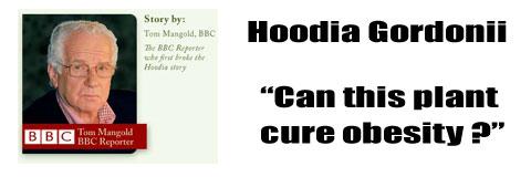 Hoodia on the BBC