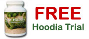 Free Hoodia Slimming Pills