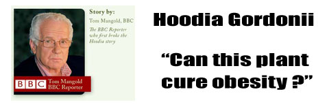 Hoodia on the BBC